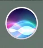 Siri for macOS